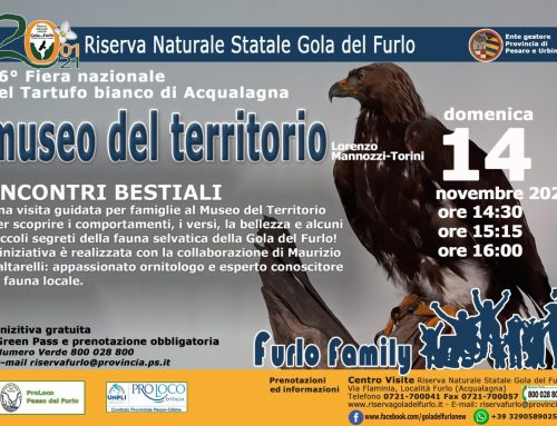 FURLO – MUSEO DEL TERRITORIO 14 NOVEMBRE 2021